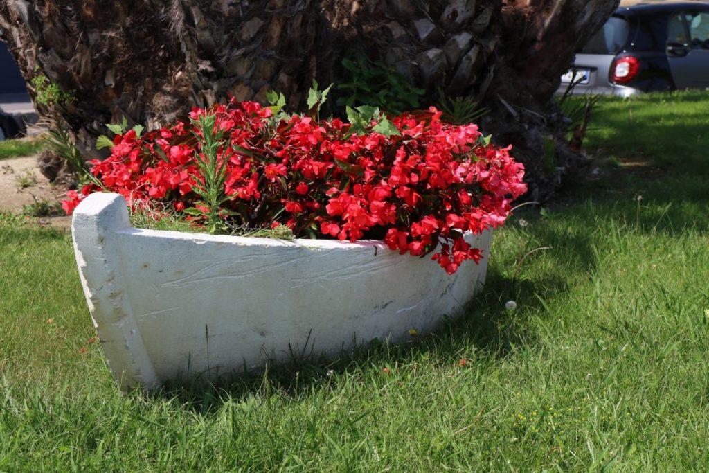 Boot, Blumenkasten oder Kunst?